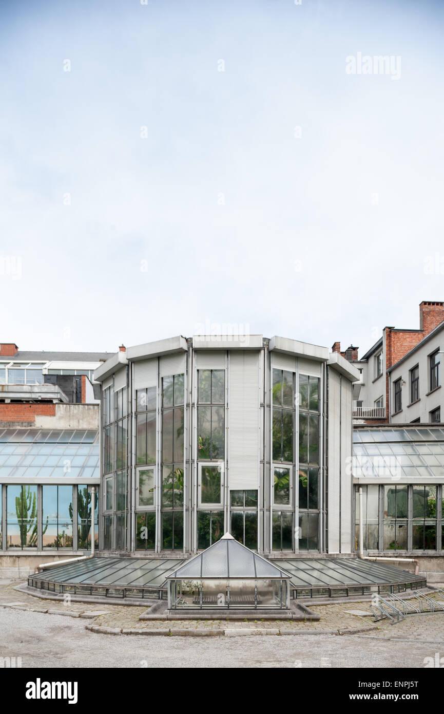 Belgium, Antwerpen, greenery in the botanical garden - Stock Image