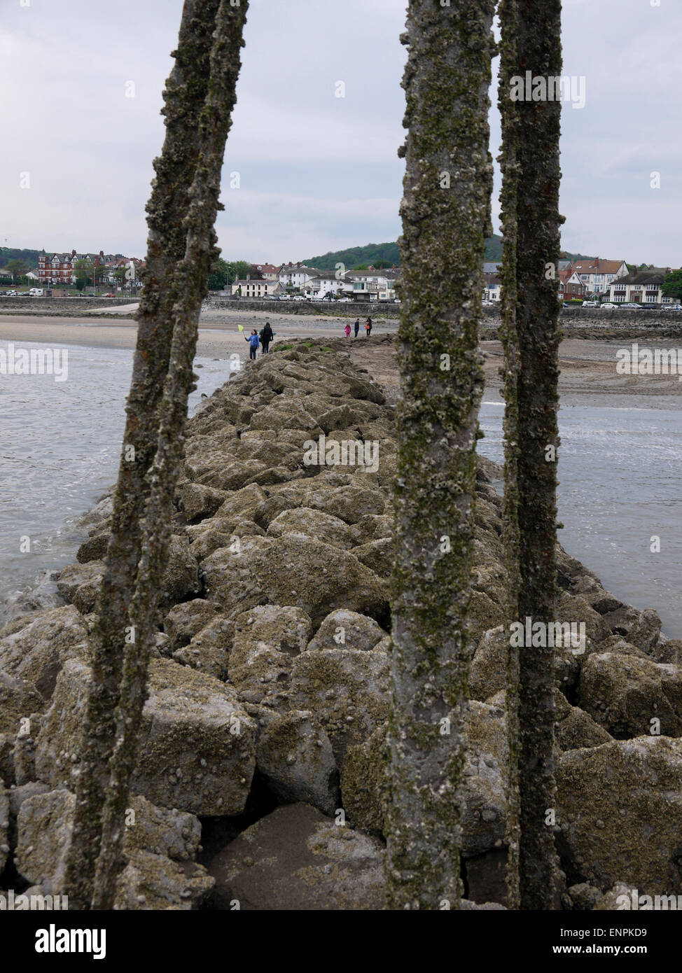 Rhos on Sea from the end of the harbour breakwater with the barnacle-encrusted tide-marker in the foreground - Stock Image