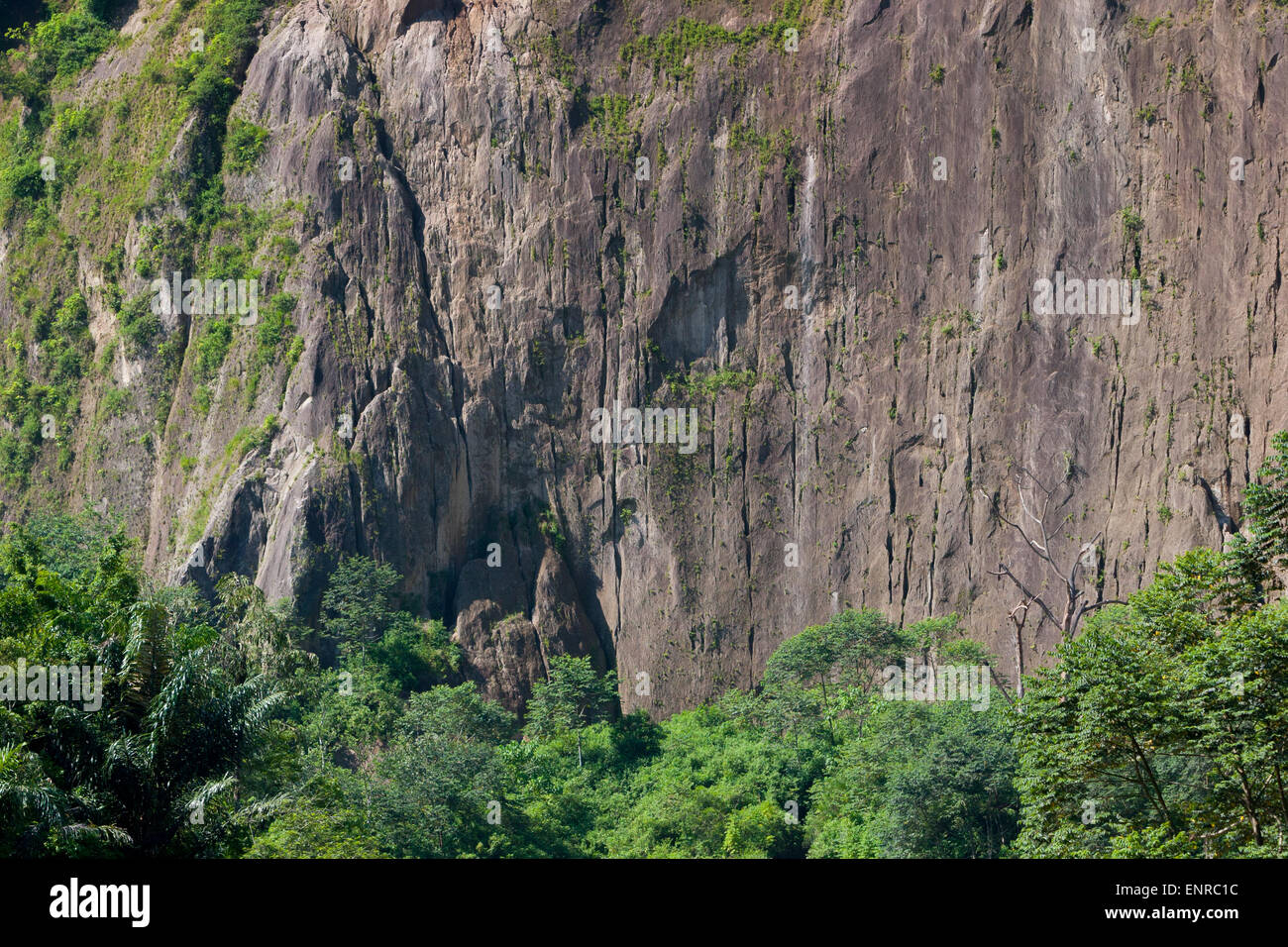 Big wall of the Harau Valley in West Sumatra, Indonesia. - Stock Image