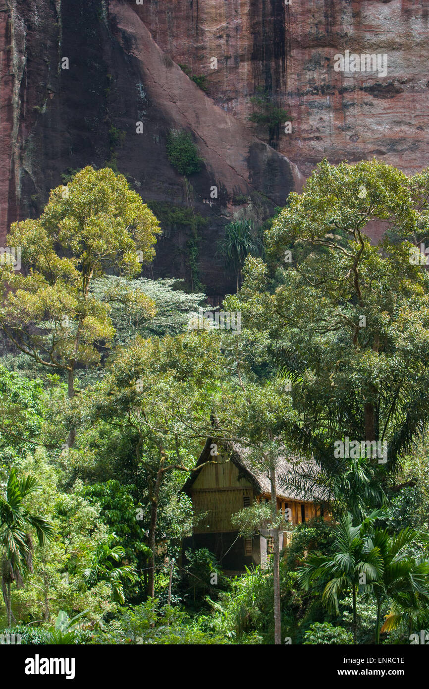 Traditional house in between tropical trees below cliffs in Harau Village, Sumatra, Indonesia. - Stock Image