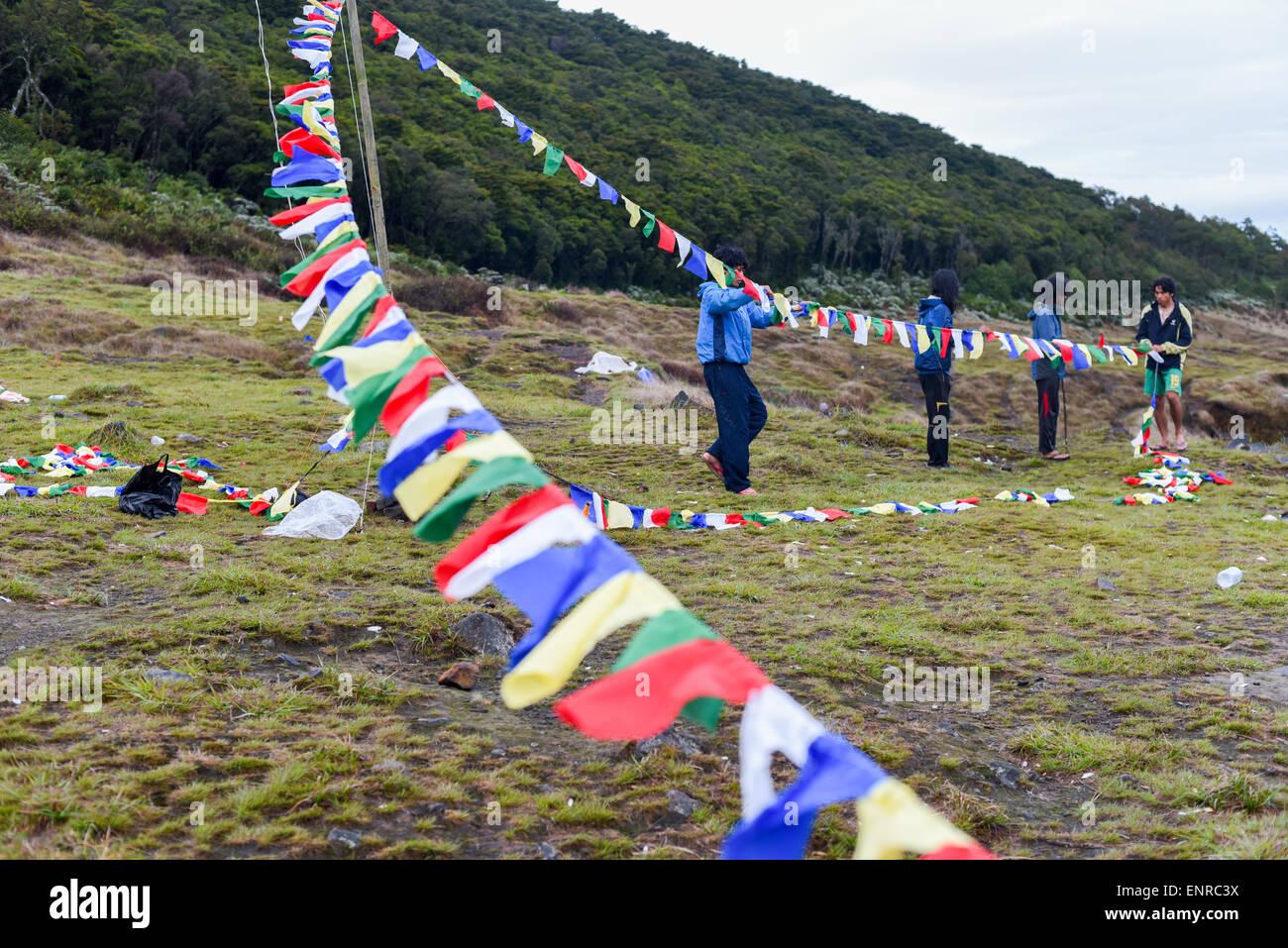 Young men install lung ta prayer flags of Nepal at Suryakencana valley, Mount Gede, Gede Pangrango National Park, - Stock Image
