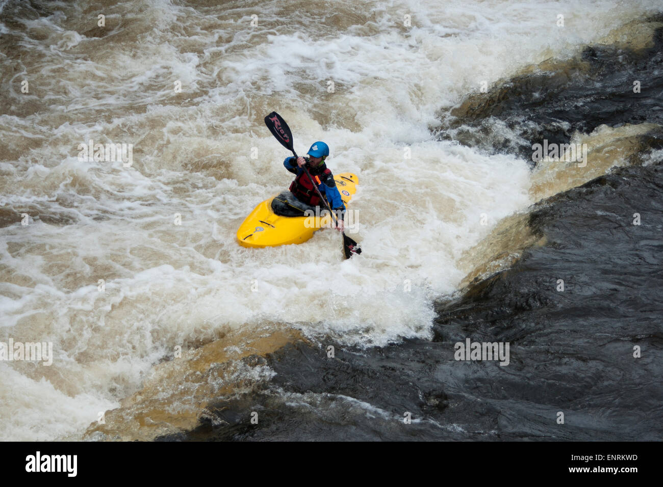 Kayaker, River Dee, Llangollen, Wales, UK Stock Photo