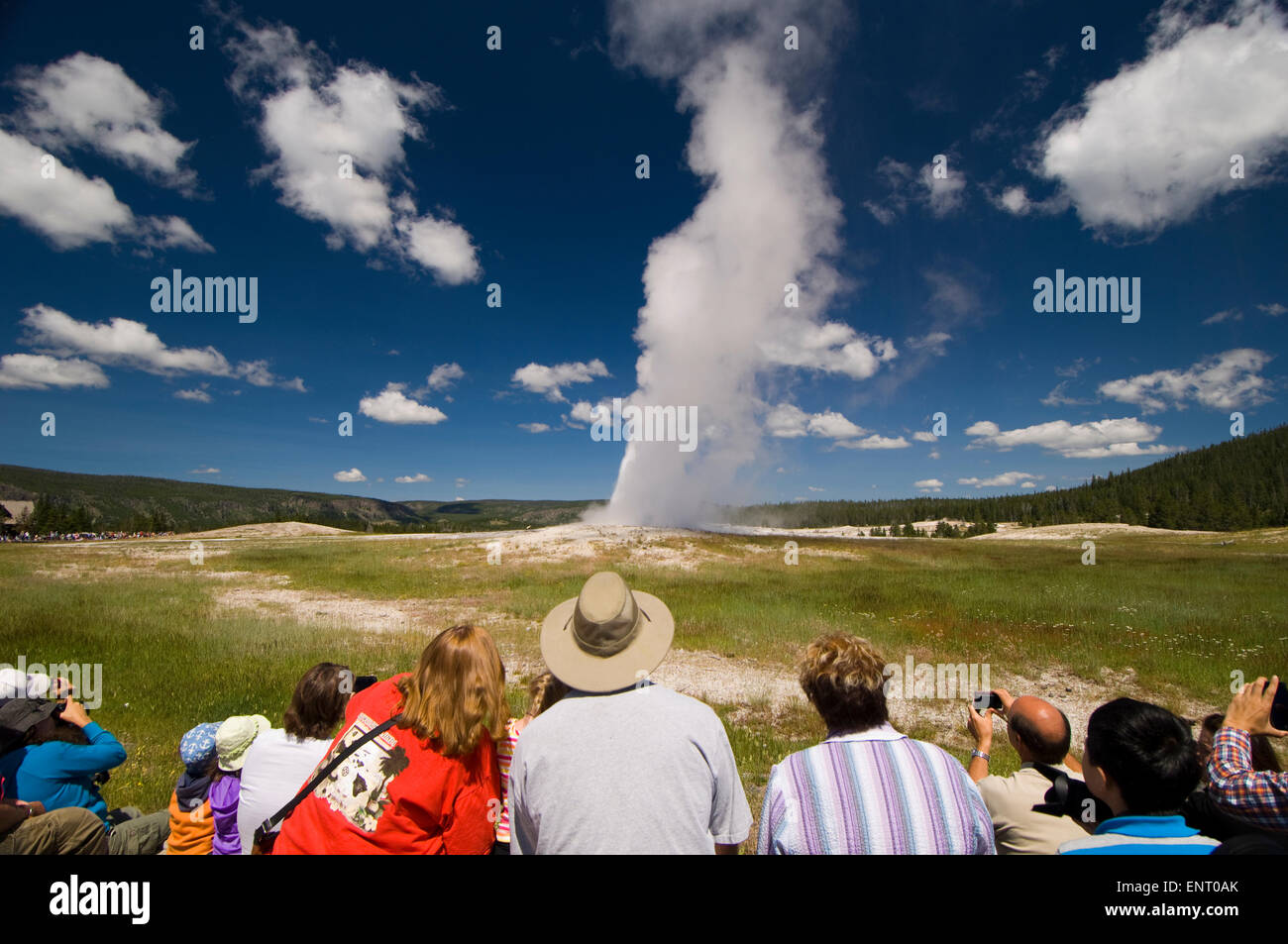 People watching Old Faithful Geyser being faithful. Yellowstone National Park, Wyoming, USA. - Stock Image
