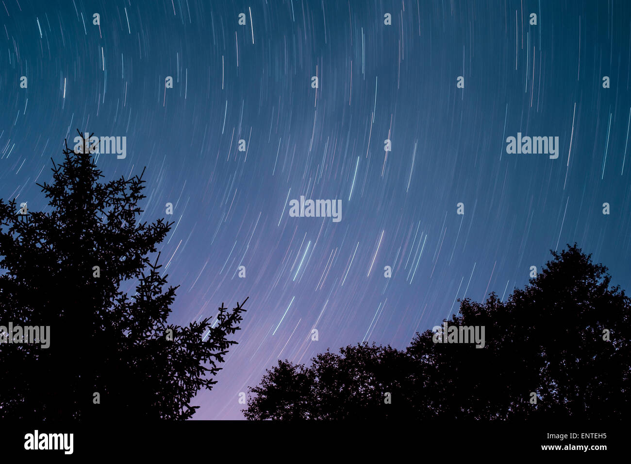 Star trail in the night sky in Galloway Forest Park, Scotland, UK - Stock Image
