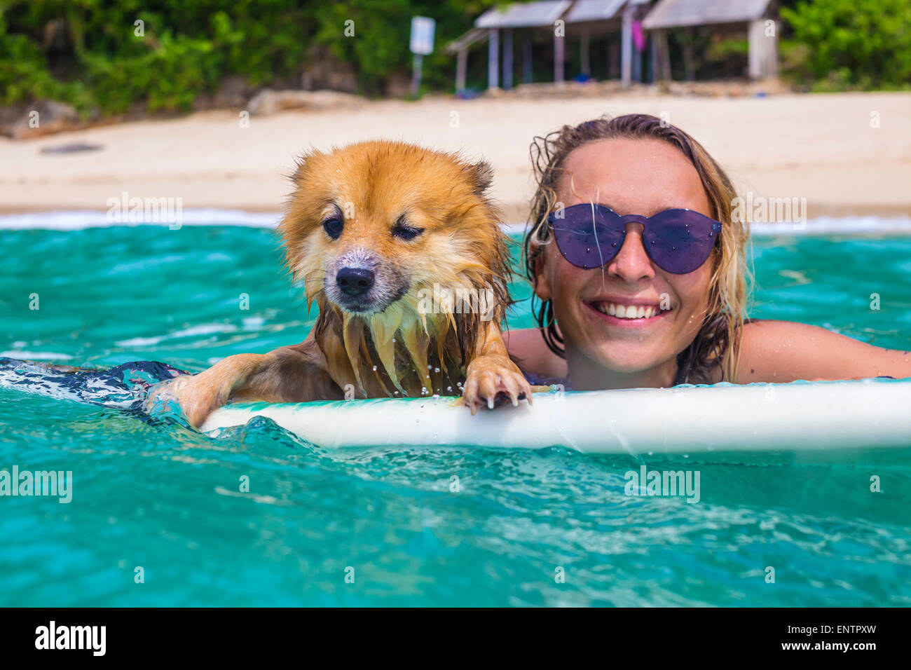 Surfer girl and funny dog in ocean water. - Stock Image
