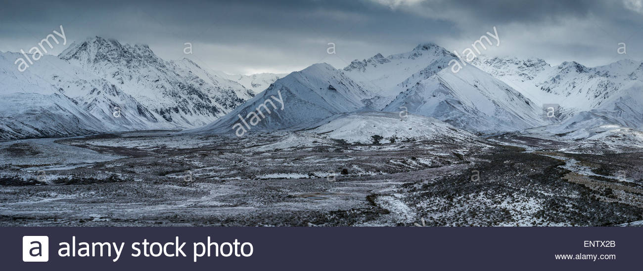 Denali national park (Alaska) after first snow in early september - Stock Image
