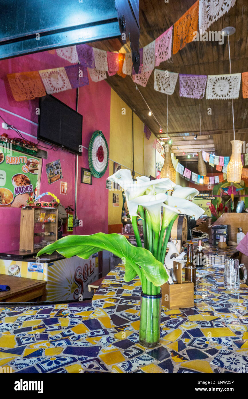colorful interior of restaurant serving Mexican fast food with glass of graceful calla lilies on multicolor tile - Stock Image