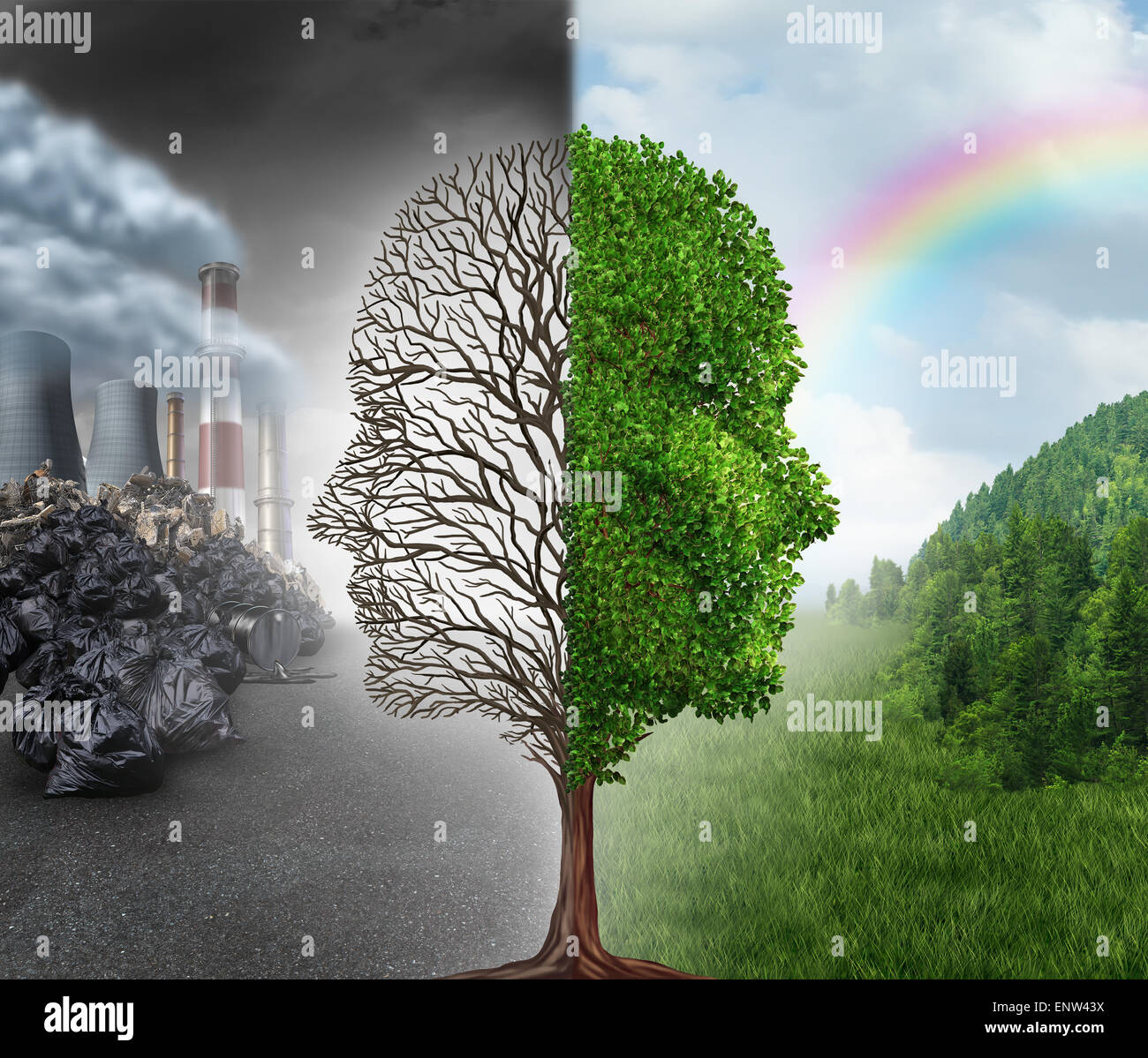 Environment change and global warming environmental concept as a scene cut in two with one half showing a dead tree - Stock Image