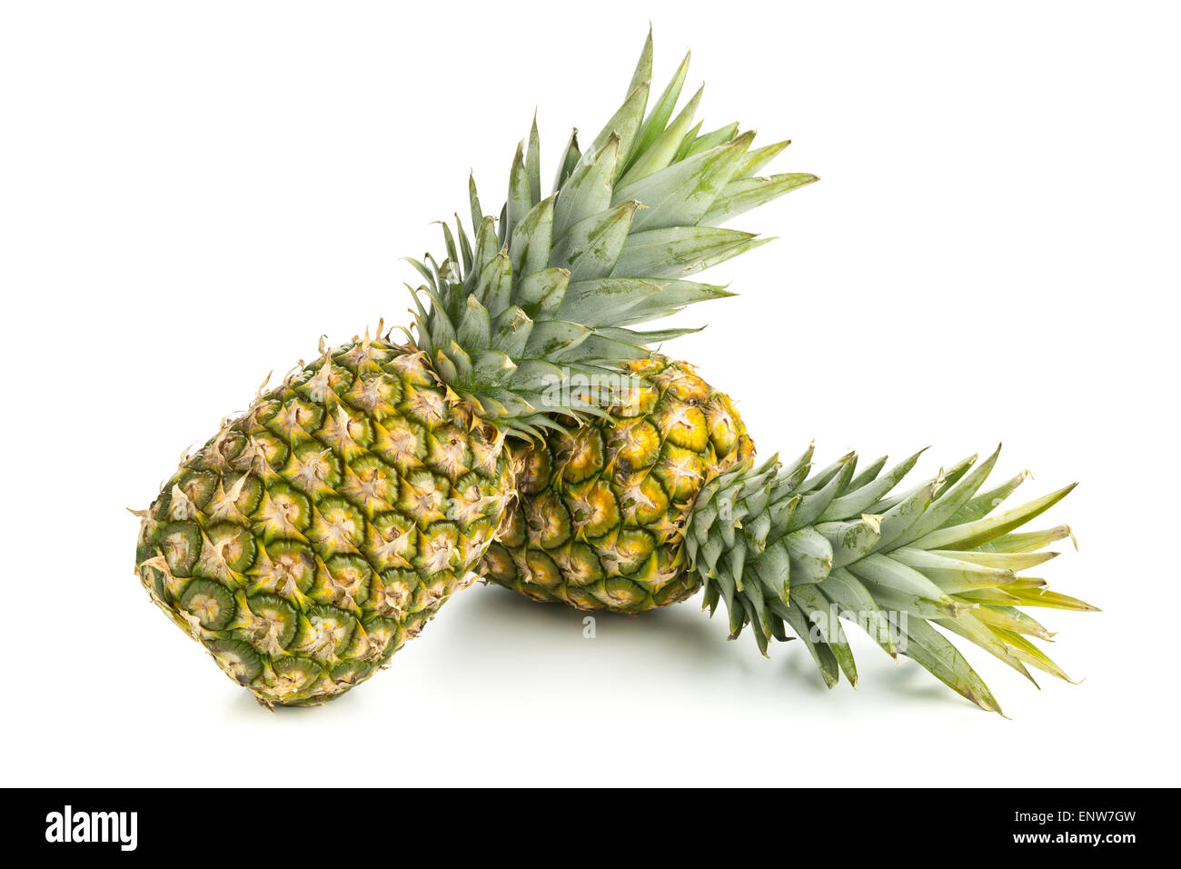 Two whole uncut pineapple fruit (ananas comosus) with green leaves over white background - Stock Image