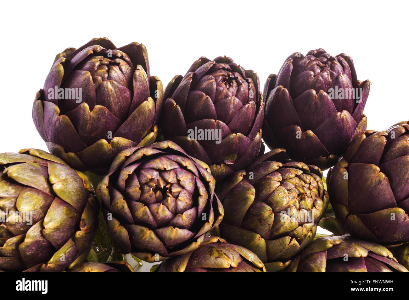 Pile of Purple artichokes ready for cooking, isolated - Stock Image