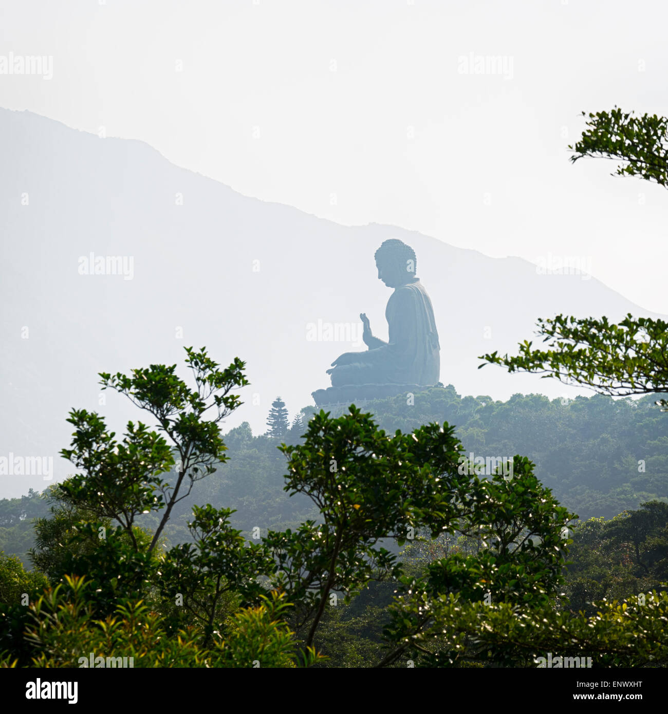The Giant Buddha in Lantau Island, Hong Kong Stock Photo