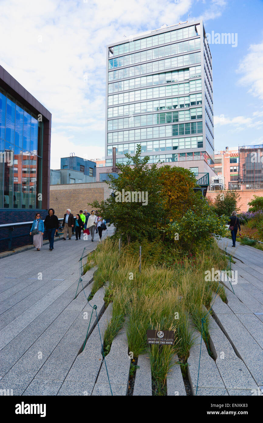 USA, New York, Manhattan, people walking on the High Line linear park on an elevated disused railroad spur called - Stock Image