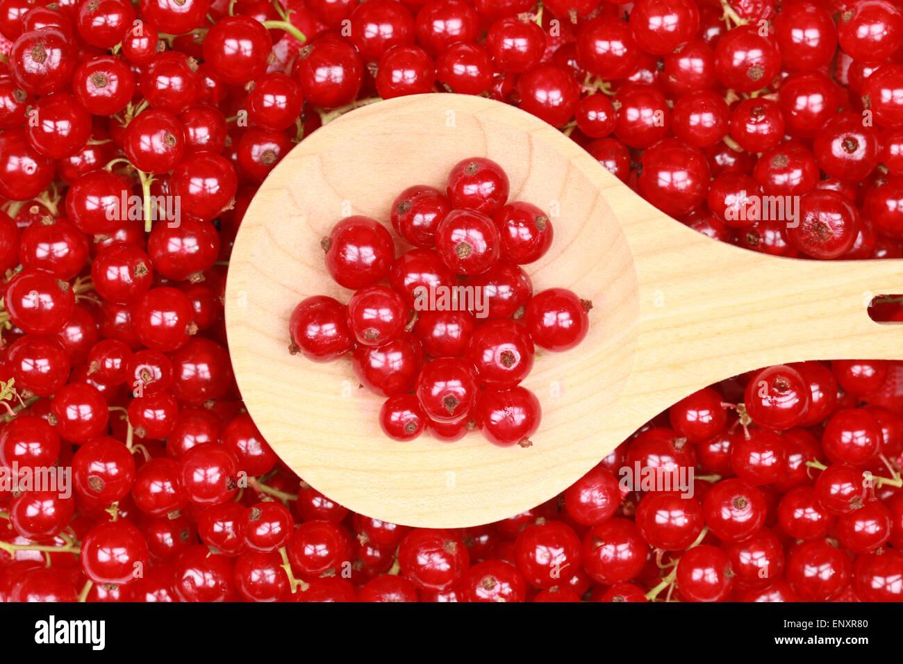 Frisch gepflückte rote Johannisbeeren Stock Photo