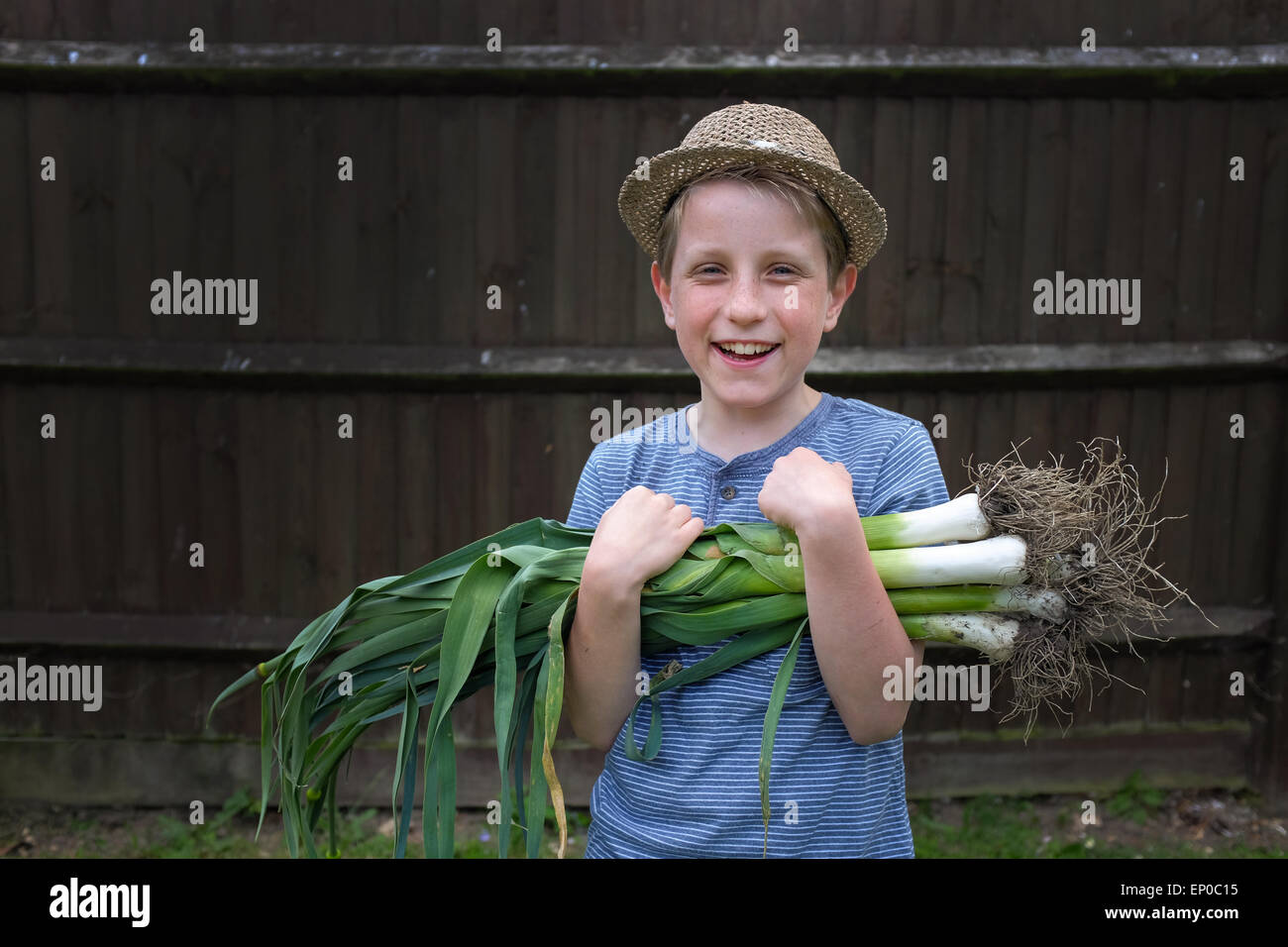 A happy boy with fresh grown organic leeks picked from the garden - Stock Image