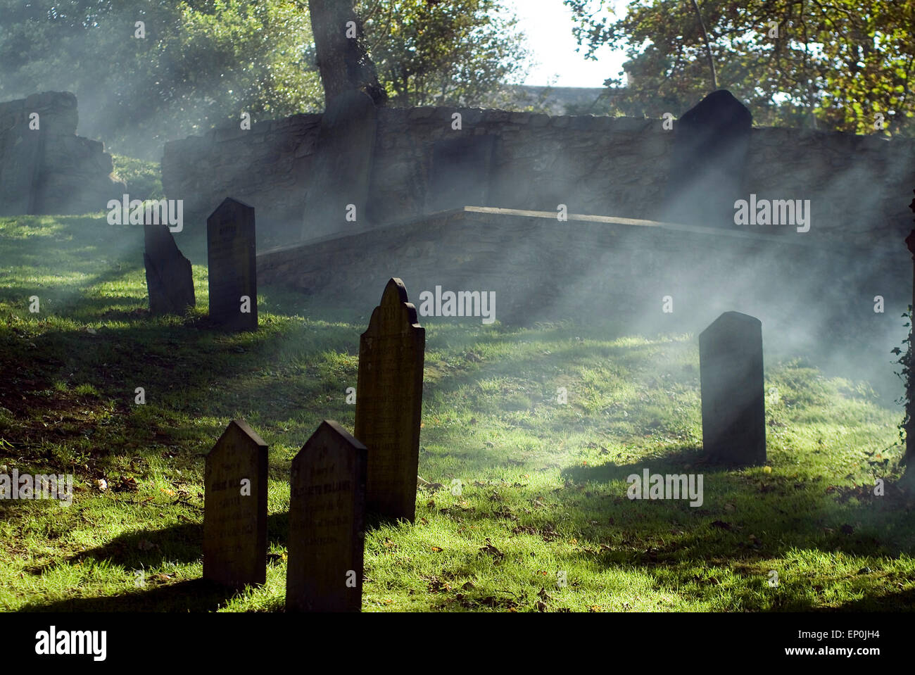 St Davids Cemetery Pembrokeshire West Wales, UK, Europe - Stock Image