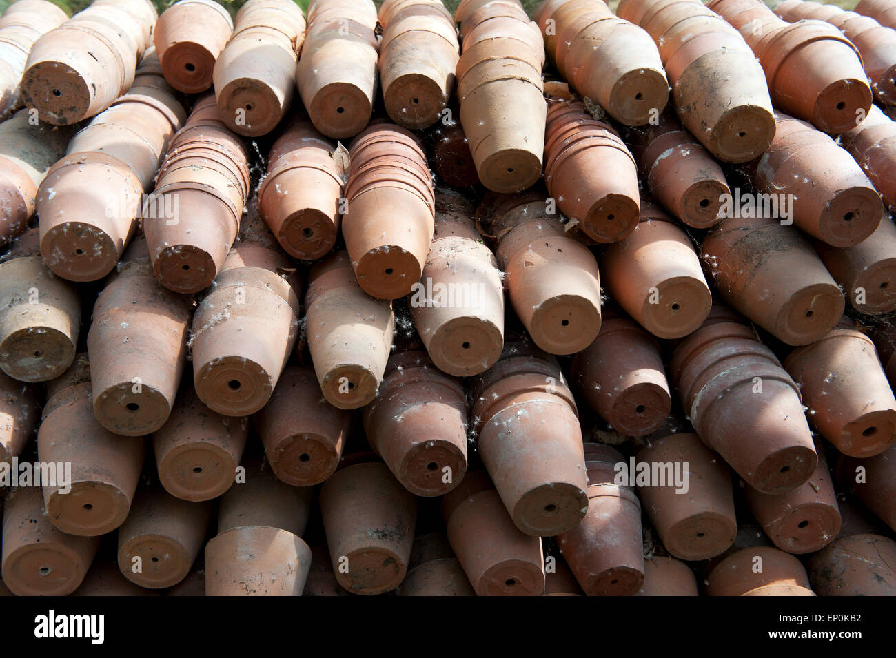 Clay pots in the green house - Stock Image