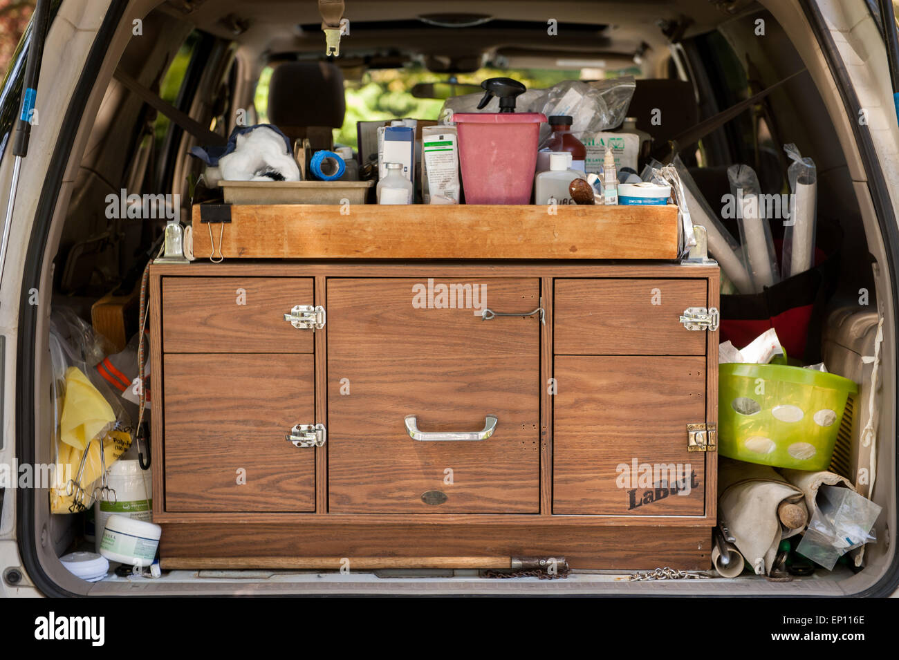 The supplies of an equine vet in the back of her car in Sparks, Maryland, USA - Stock Image