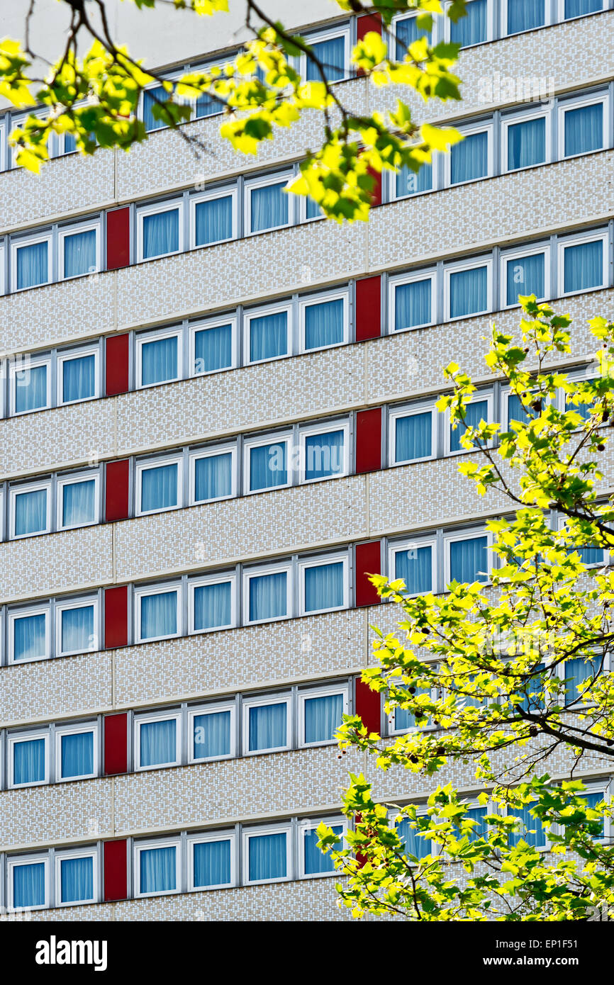 detail of fasade of skyscraper with branch - Stock Image
