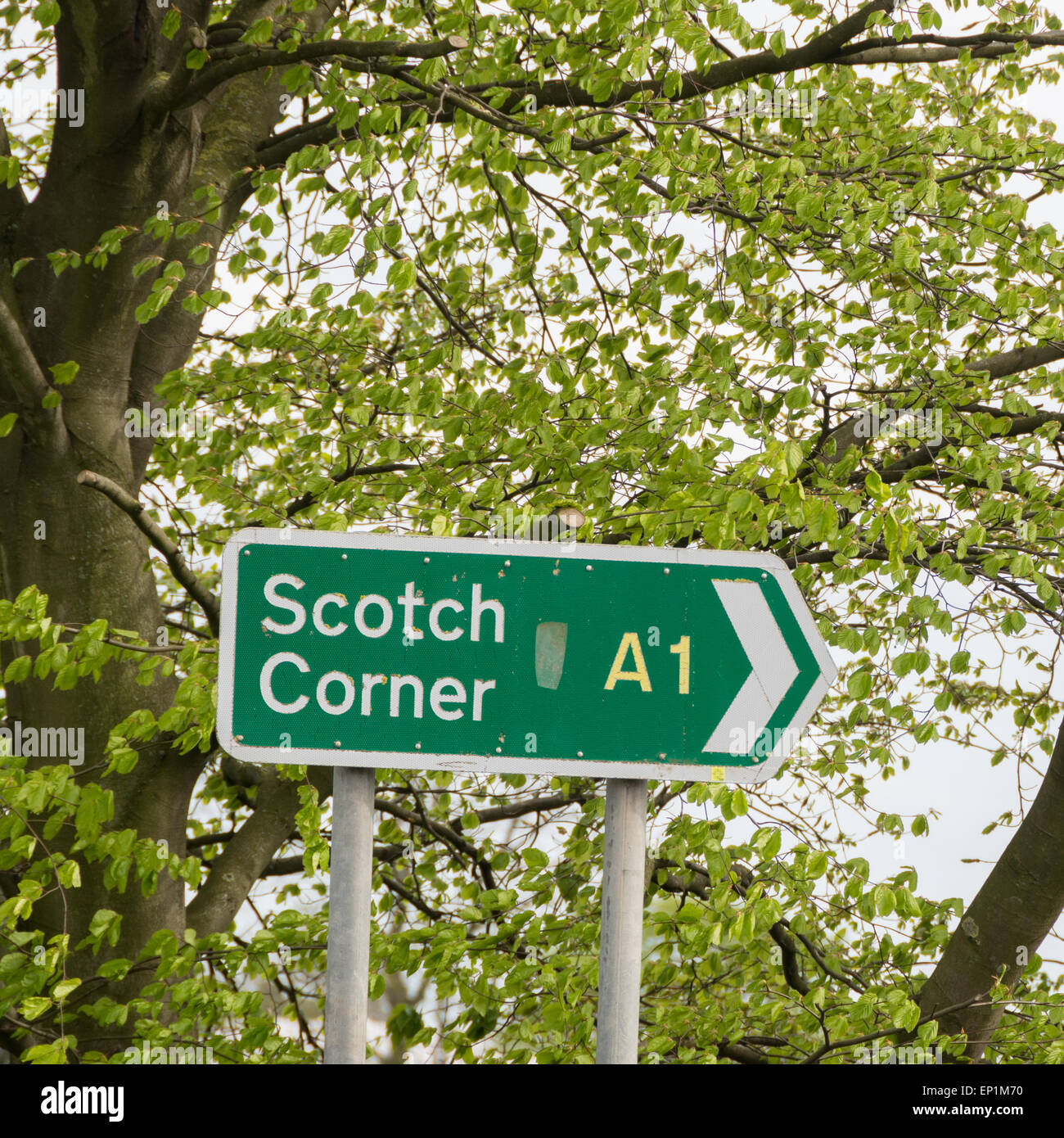 Scotch Corner A1 road sign on a spring day -  North Yorkshire, England, UK - Stock Image