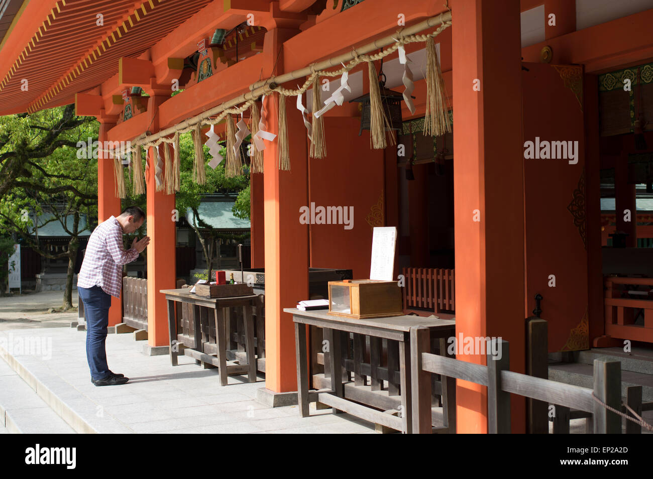 Praying at Sumiyoshi Shrine ( Shinto ) Fukuoka, Kyushu, Japan - Stock Image