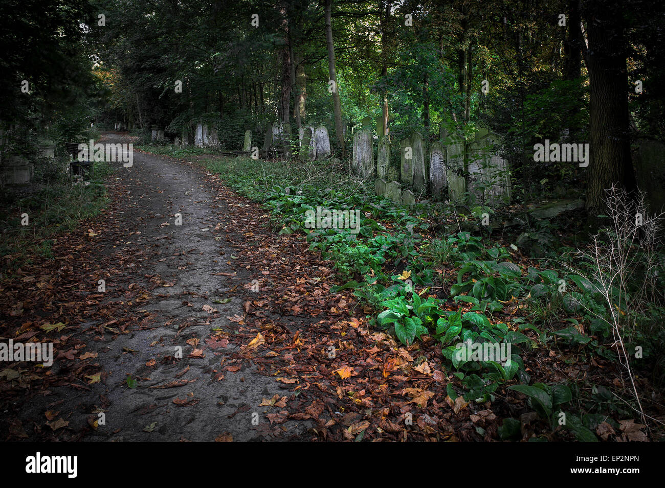 A path running through Tower Hamlets Cemetery in the East End of London. Stock Photo