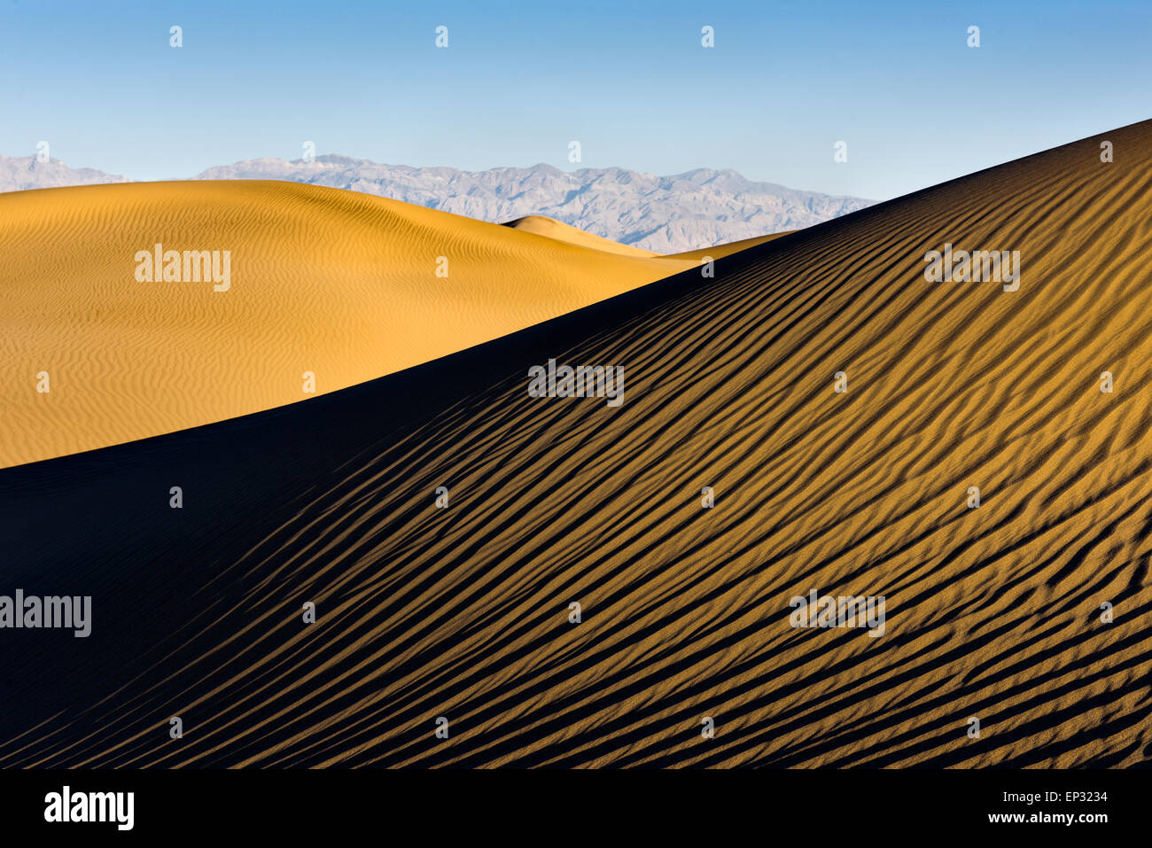 Mesquite Sand Dunes in Death Valley National Park in pristine condition the morning after a frequent wind storm. - Stock Image
