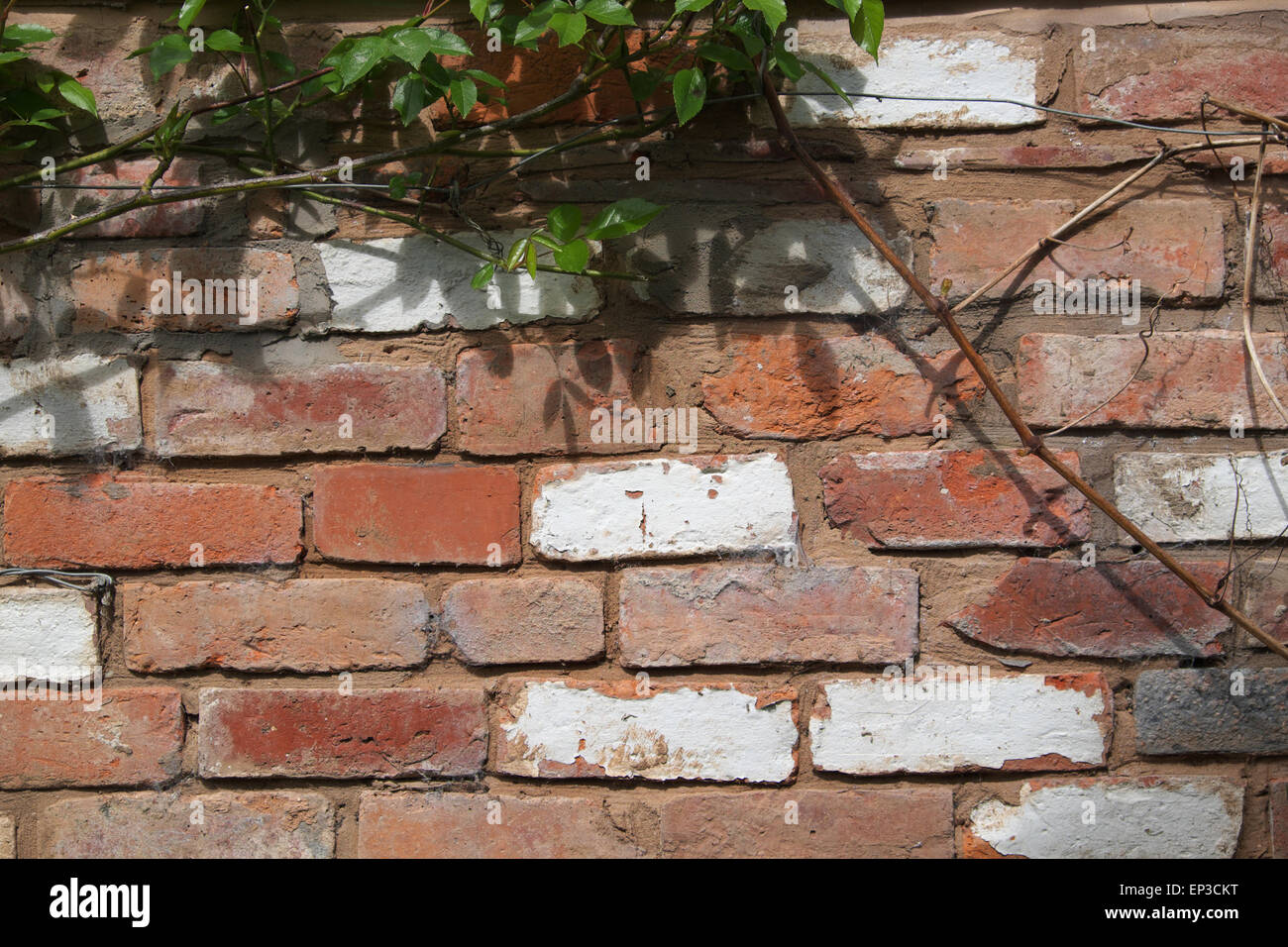 Recycled Used Old Bricks Used To Build A Garden Wall   Stock Image