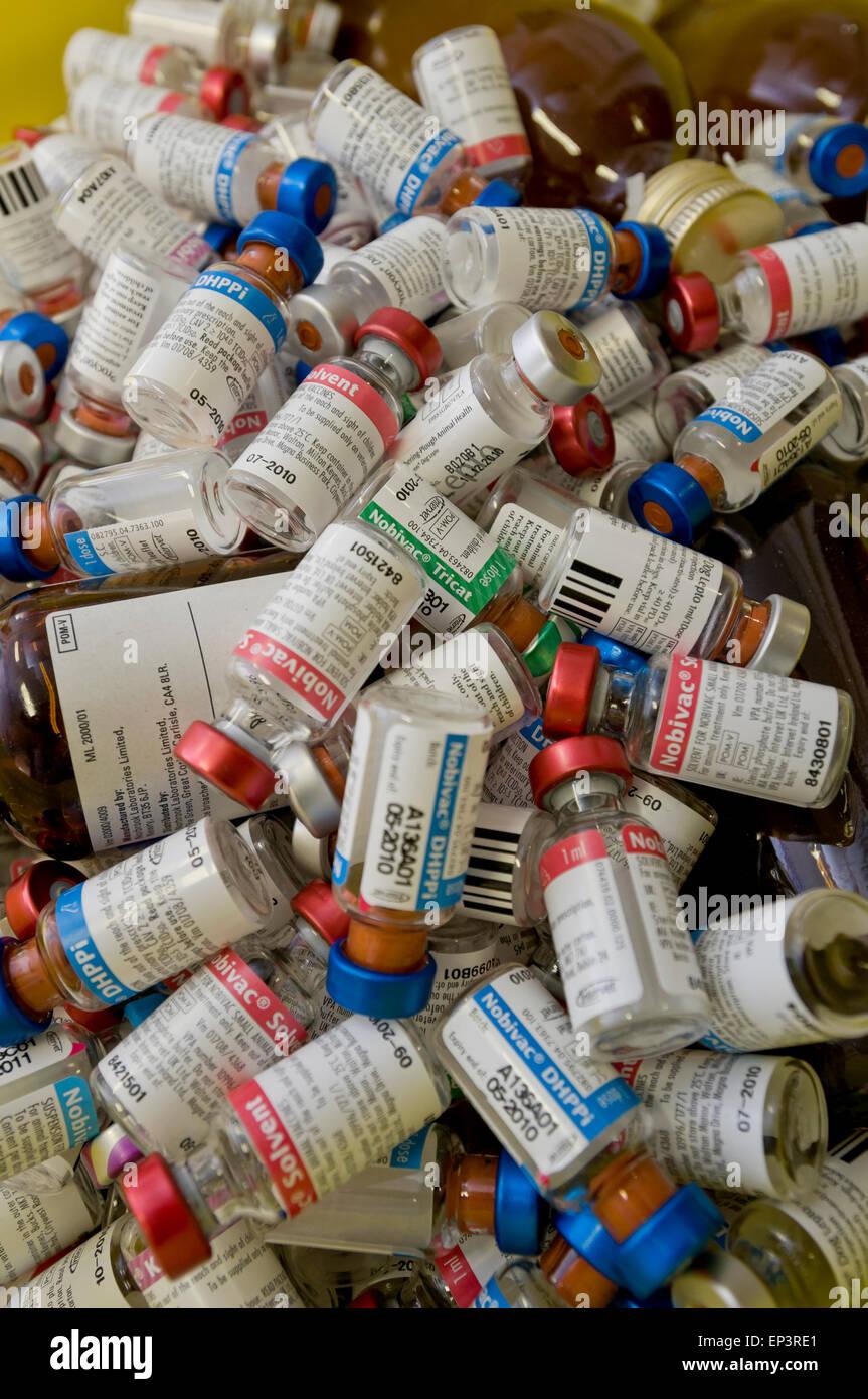 Discarded drug bottles at a vets - Stock Image
