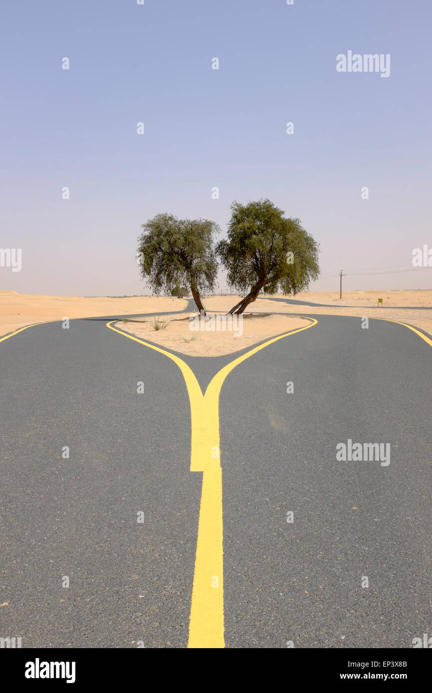 New desert cycle track at Al Qudra in Dubai United Arab Emirates - Stock Image