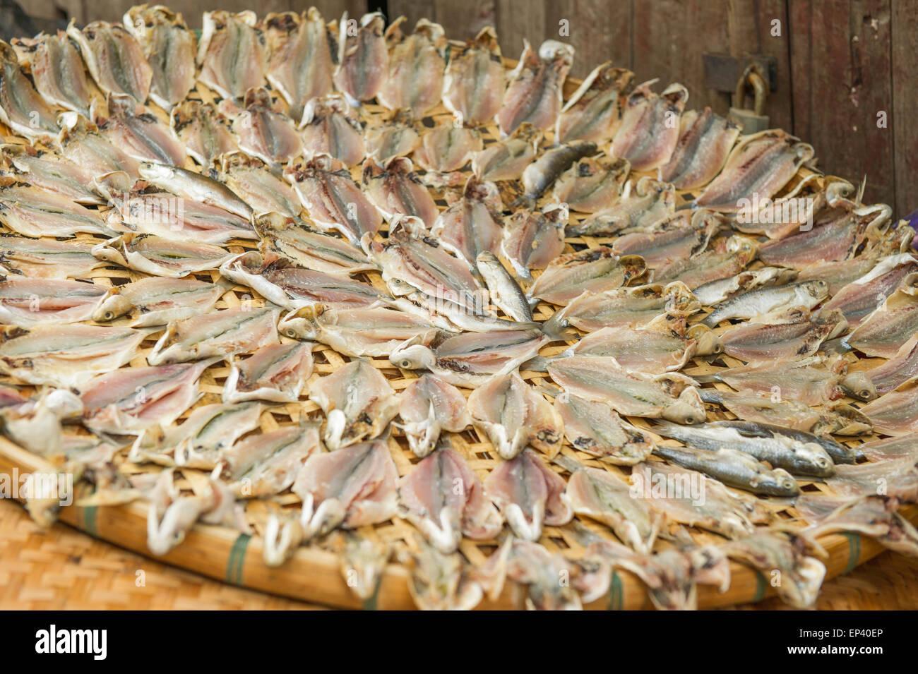 Fish drying on a reed weaved tray, Lantau Island, Hong Kong, China - Stock Image