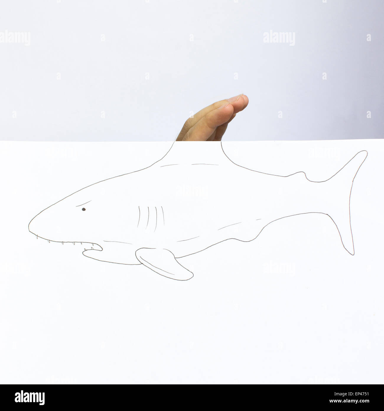 Conceptual shark - Stock Image