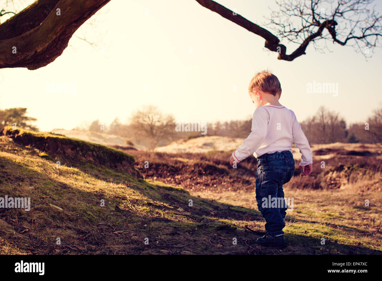 Toddler exploring the countryside Stock Photo