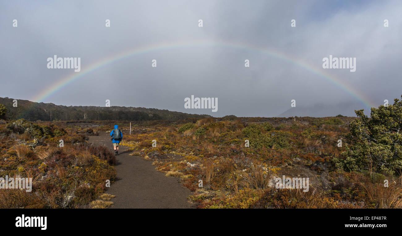 Man hiking towards a Rainbow, Tongariro National Park, North Island, New Zealand - Stock Image