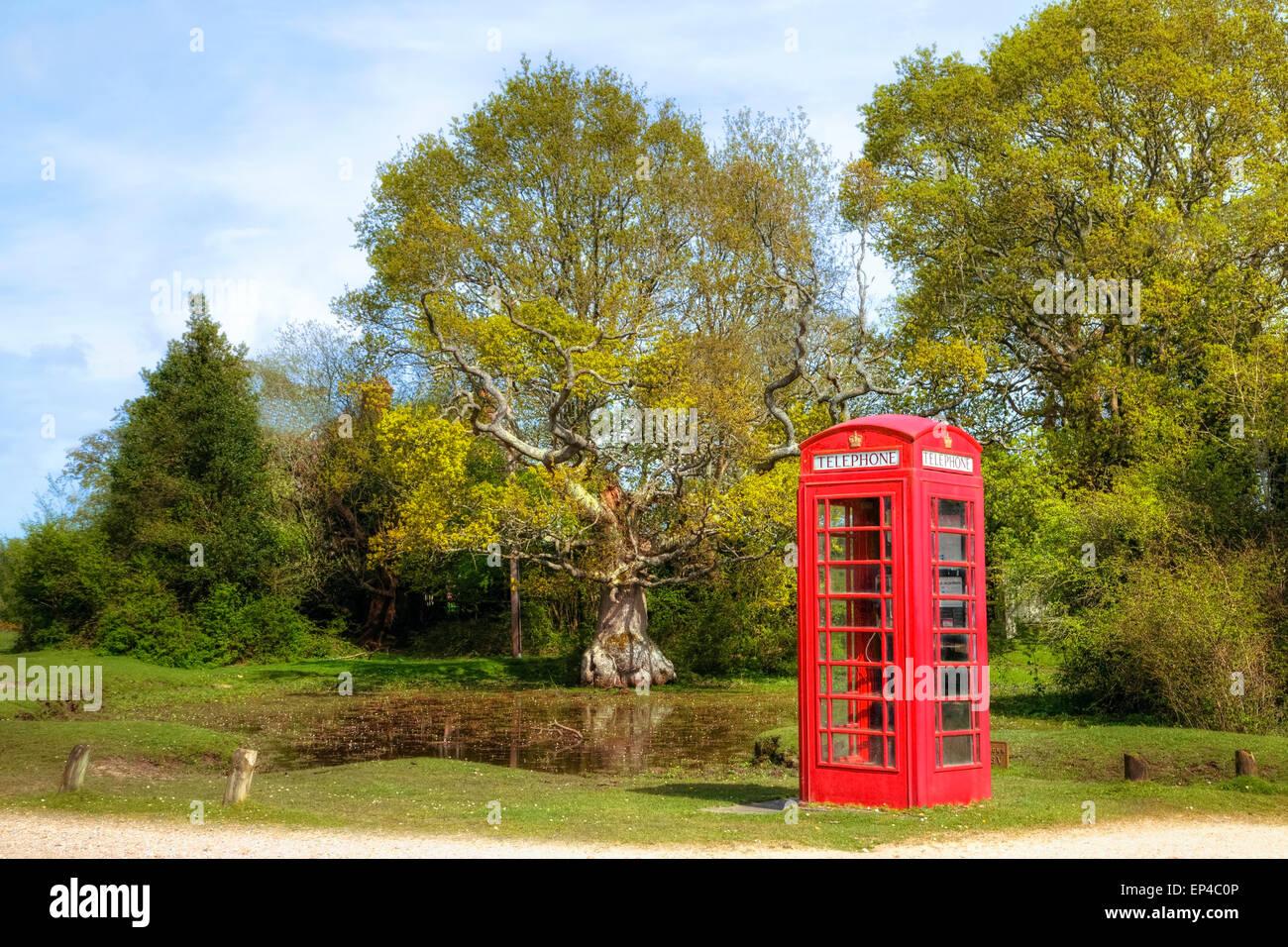 phone box, New Forest, Brockenhurst, Hampshire, England, UK - Stock Image