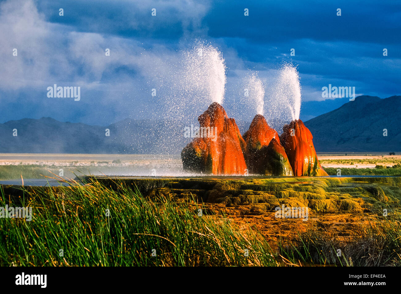 The unique Fly Geyser formation in the Black Rock desert of Nevada is the result of geothermal exploration. Stock Photo