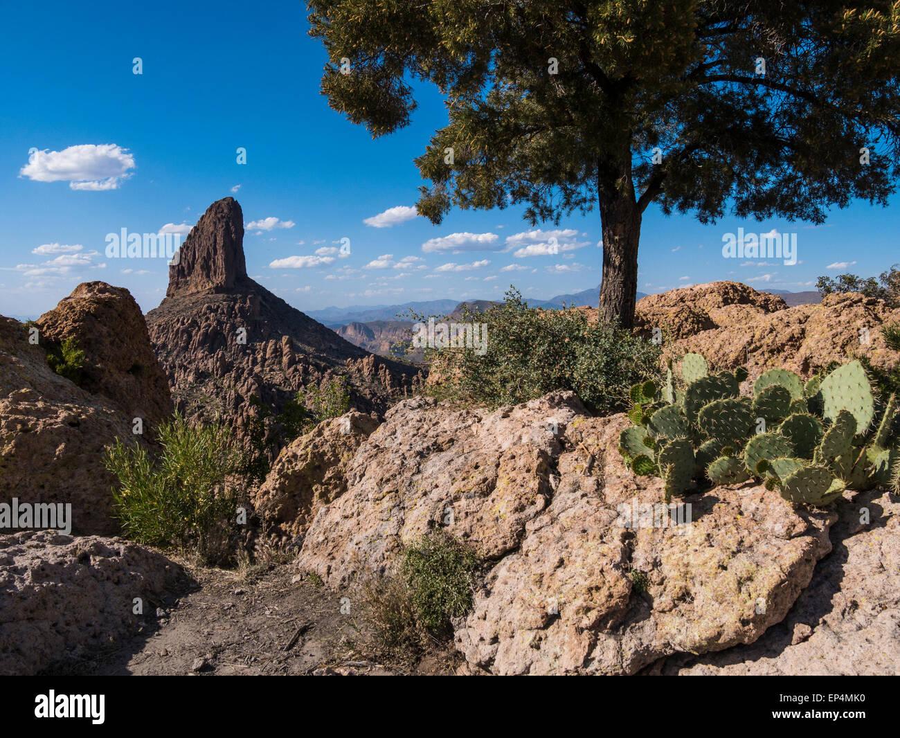 Weavers Needle from Fremont Saddle, Superstition Wilderness Area, Arizona. - Stock Image