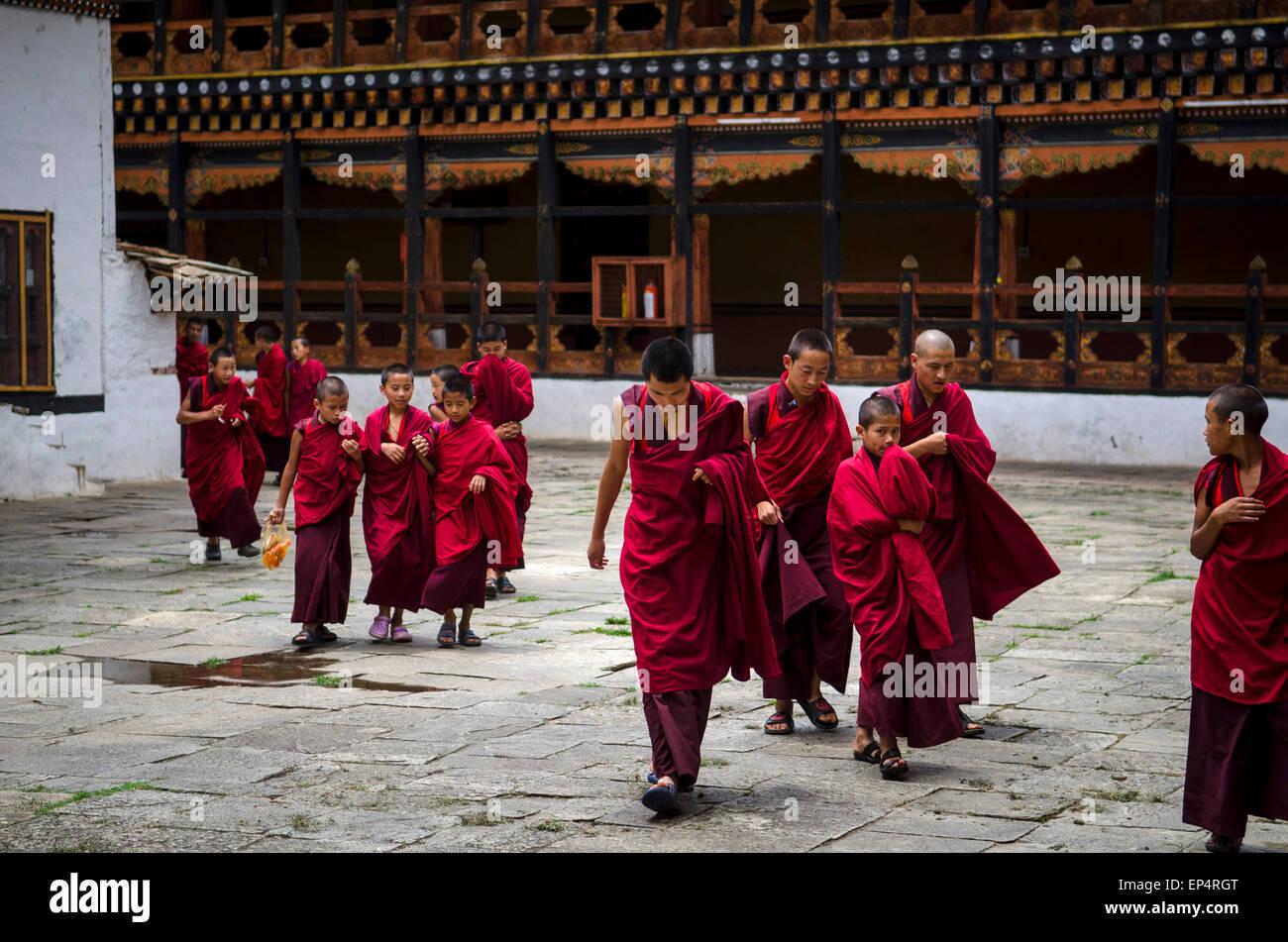 Young monks in Paro Dzong, Paro, Bhutan - Stock Image