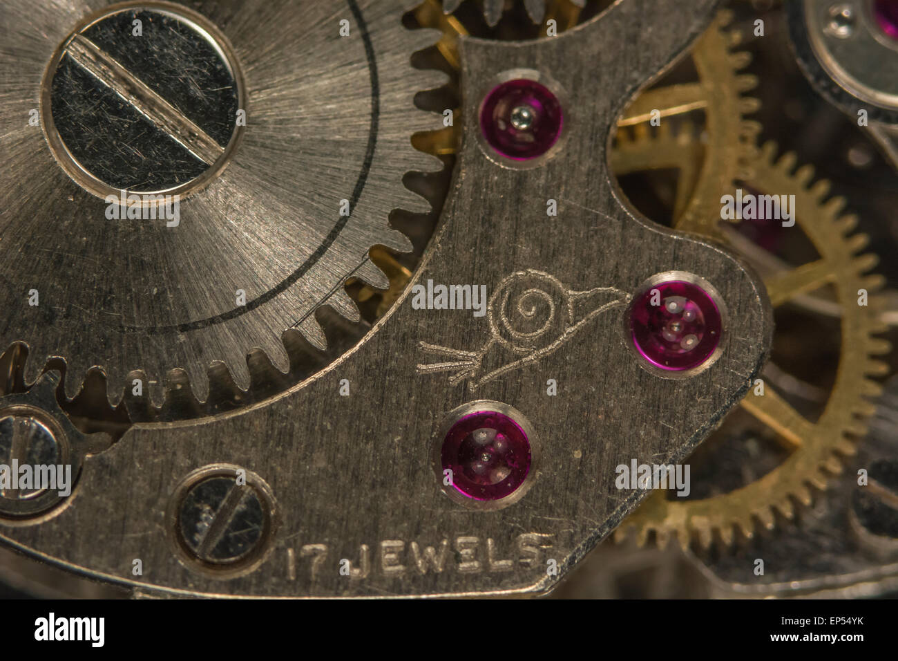 Macro-photo of wristwatch mechanism. Key focus on right hand teeth of steel cog to left half of picture, and snail - Stock Image