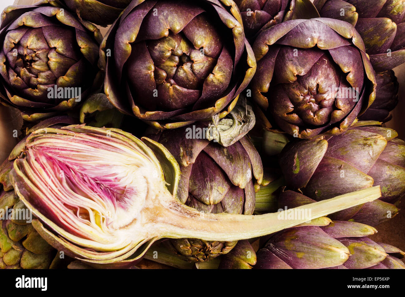 Pile of Purple artichokes ready for cooking. One artichoke is cut - Stock Image