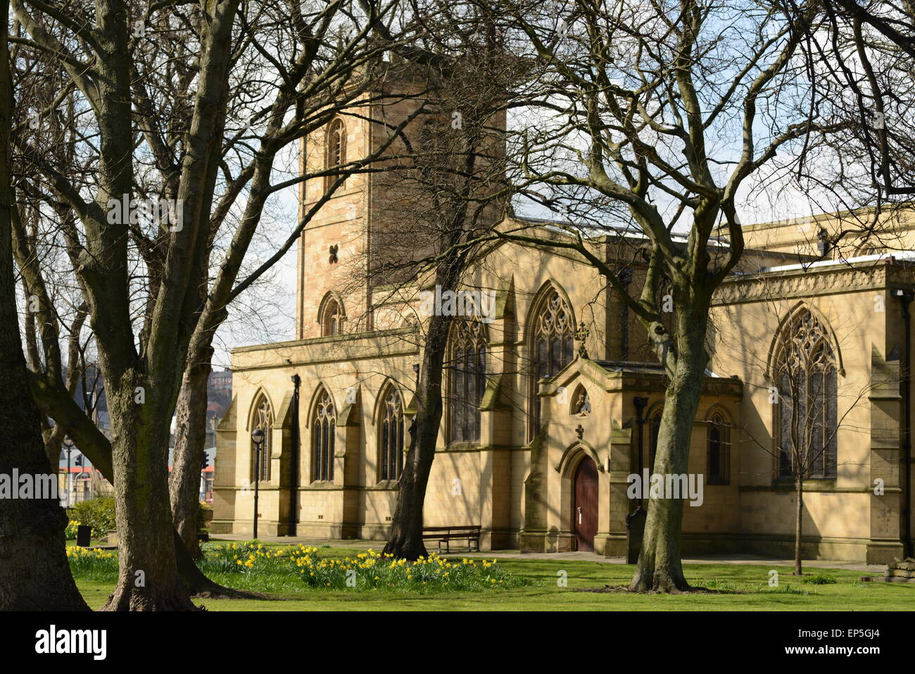 A view through the willow trees at Dewsbury Minster, West Yorkshire - Stock Image