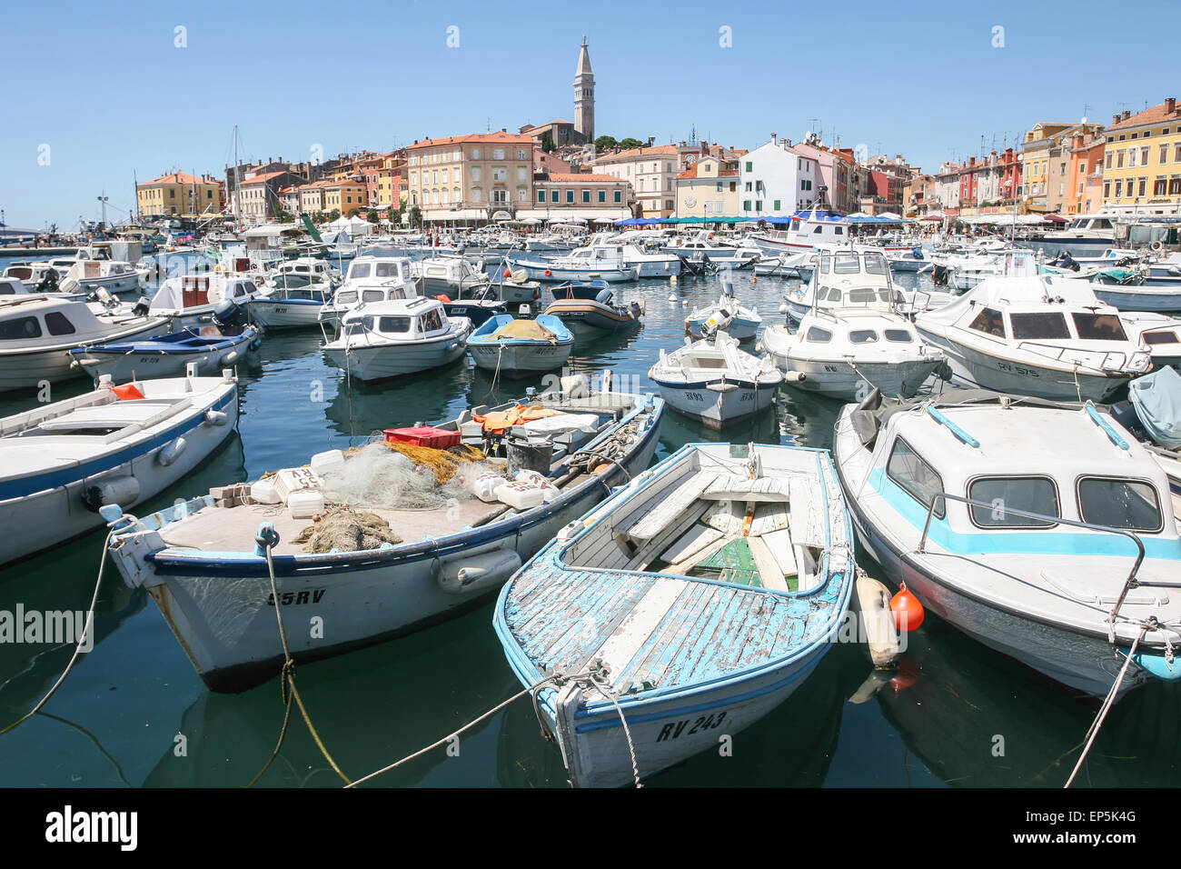A large group of boats anchored in the marina with a view of the city promenade and the old city core in Rovinj, - Stock Image