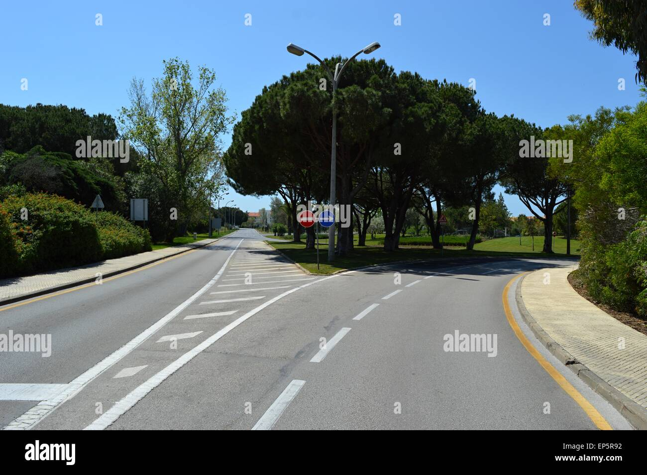 Road Junction with Trees - Stock Image