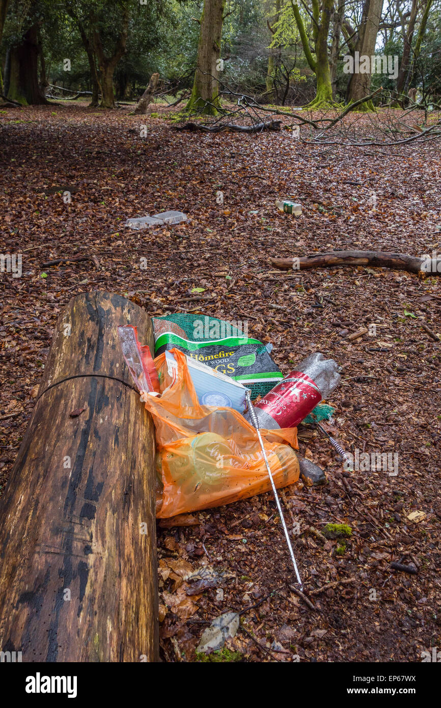 Litter left after picnic in the New Forest, Hampshire, England, UK - Stock Image
