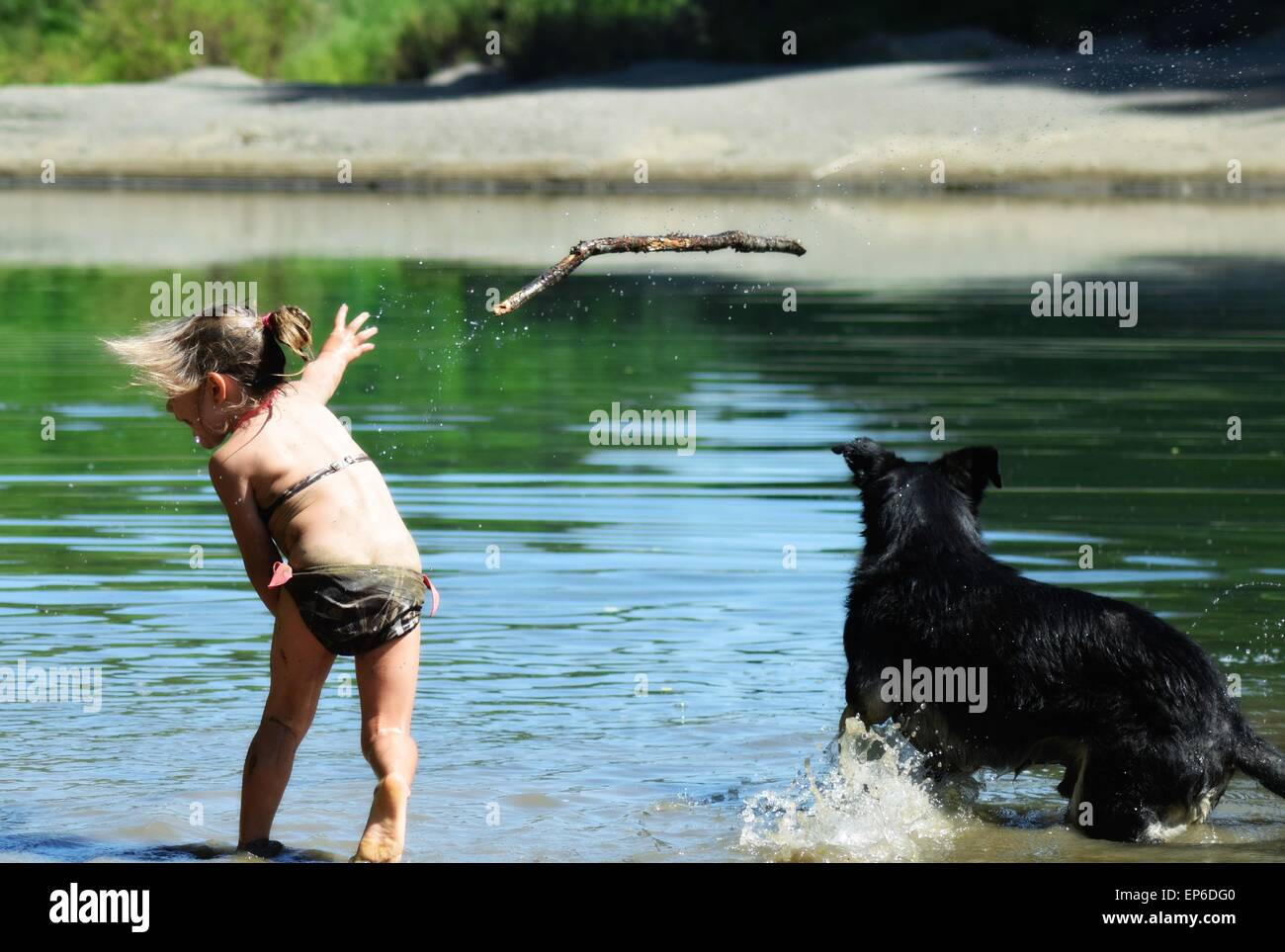 Young Girl Throwing A Stick For A Dog Into A River Stock Photo