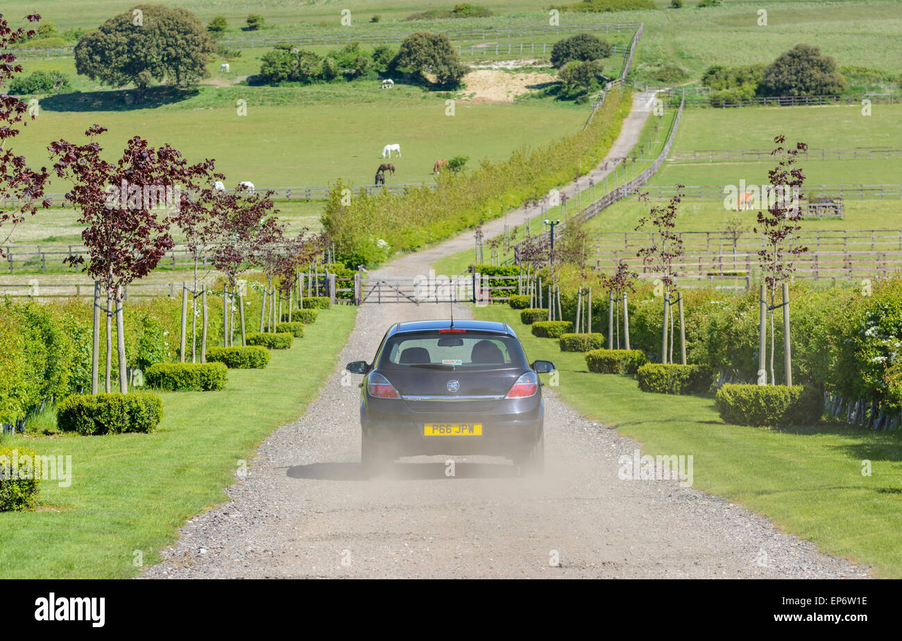 Car driving up a private road between fields in the British countryside. - Stock Image