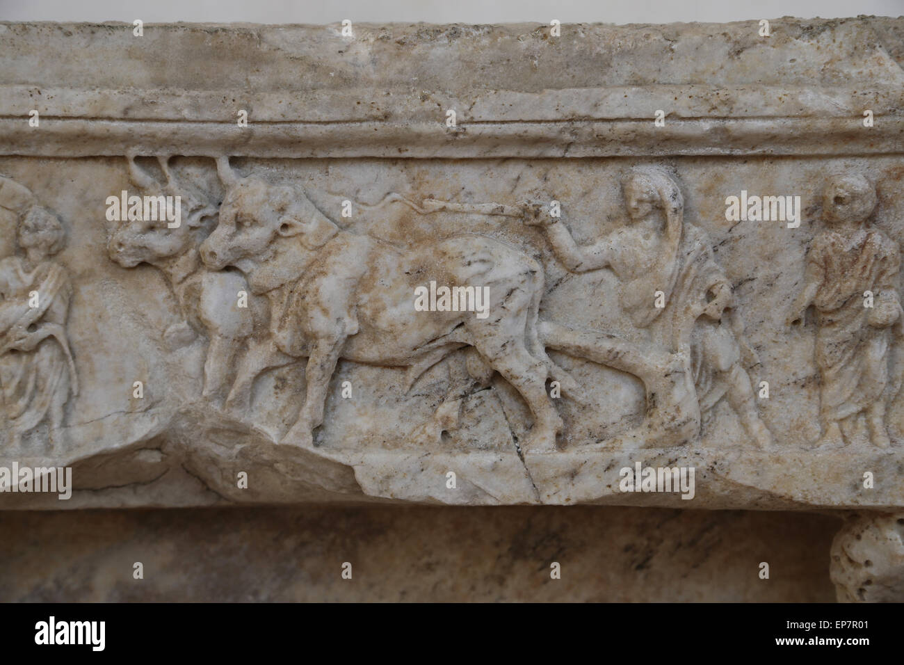 Upper frieze shows a portrayal of a city's foundation. Rome. Via Salaria. Antonine period. Rome. National Roman - Stock Image