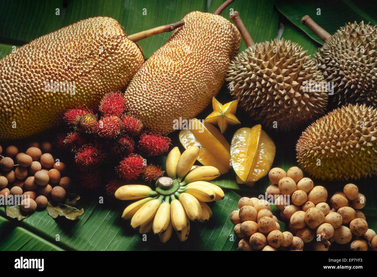 Tropical fruits variety, Malaysia; Durian, banana, star fruit, rambutan, jackfruit, longan, mata kuching Stock Photo