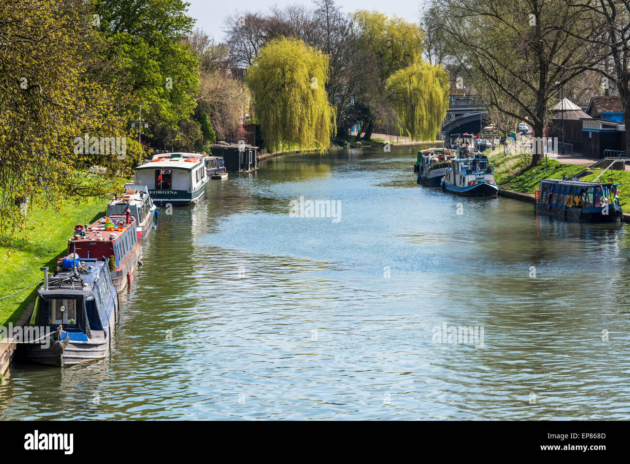 River boats and barges on the River Cam in Cambridge alongside Midsummer Common - Stock Image