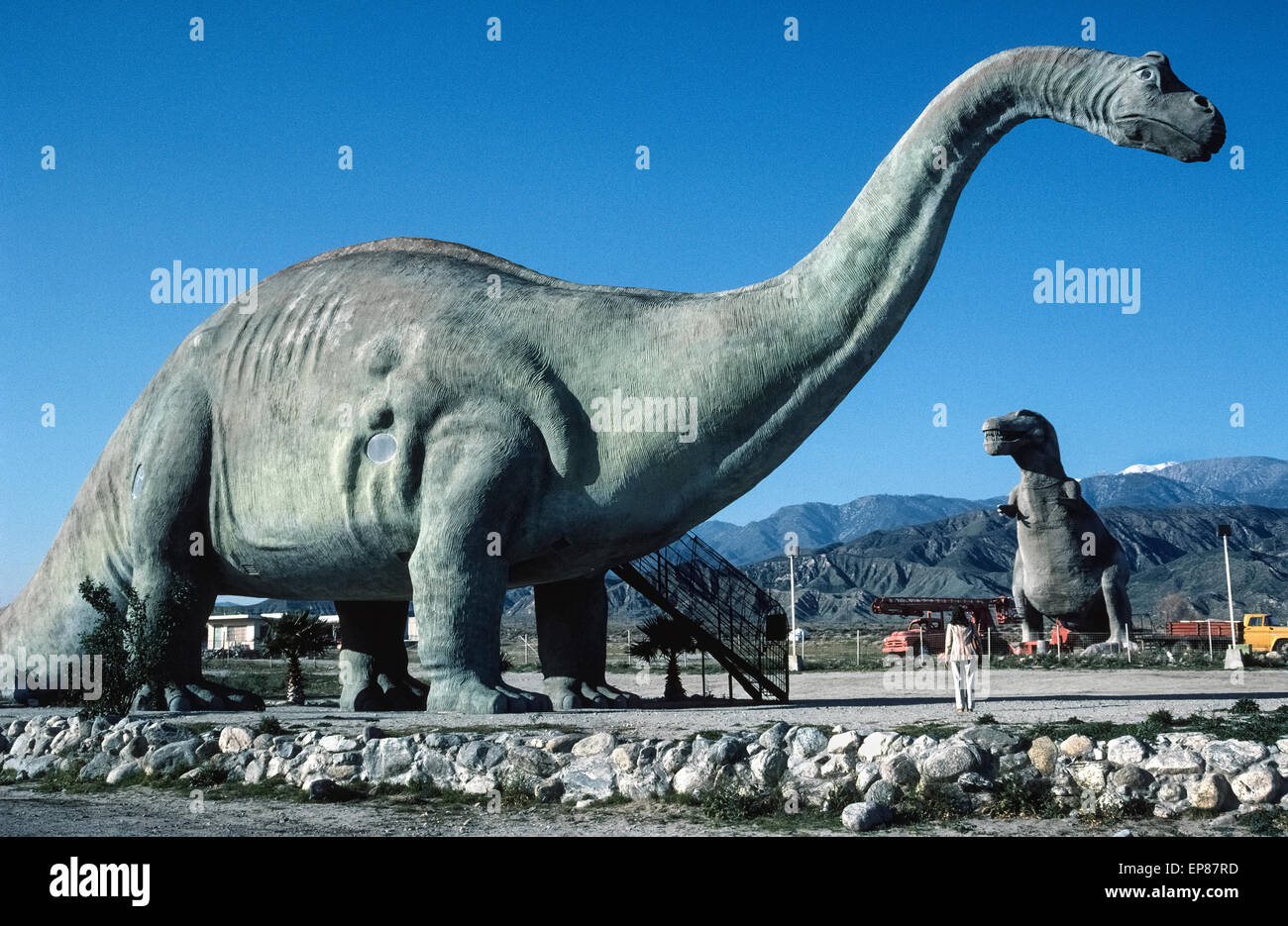 Travelers along the Interstate 10 freeway east of Los Angeles are surprised to see two huge dinosaurs in the San - Stock Image