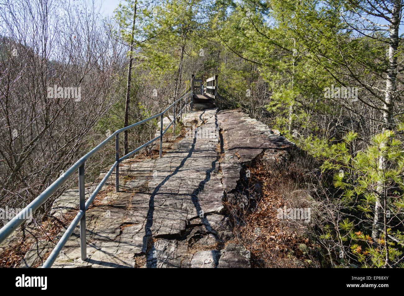 trail along the steep narrow spine of Backbone Ridge in Tennessee - Stock Image